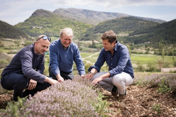 Tim Warrillow inspecting a lemon thyme crop with farmers in Provence. For Fever-Tree